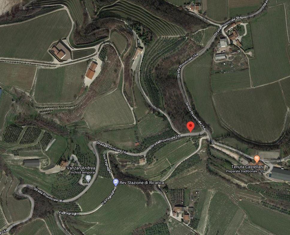 Terreno Agricolo in Vendita Tregnago